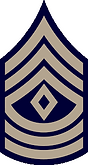 1stsgt.png