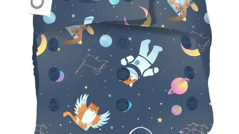 All Good Cats Go To Space (ONE)