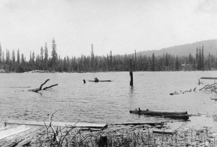 M089 Logs in Shaver Lake, circa 1920