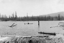 M089 Logs in Shaver Lake, circa 1920