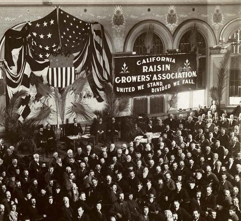 California Raisin Growers' Association Meeting - 1898