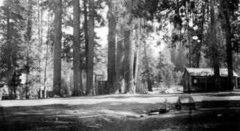 M008 Sulphur Spring, Auberry, 1919