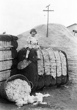 Little Miss Cotton advertizing photograp