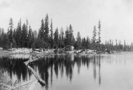 M090 Shaver Lake shore with trees, circa