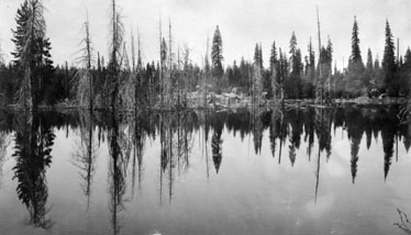M065 Trees mirrored in Shaver Lake, circ
