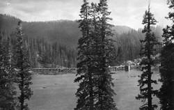 M025 Huntington Lake dam hrough the tree