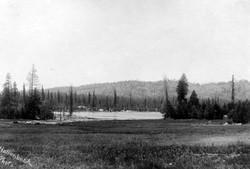 M084 Meadow near Shaver Lake, circa 1920
