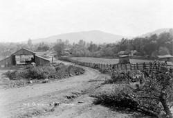 M119 A scene at Tollhouse, circa 1920
