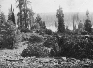 M080 View of Shaver Lake shore, circa 19