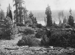 M080 View of Shaver Lake shore, circa 19