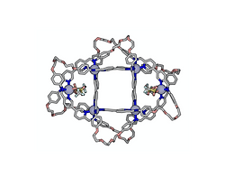 178. Controlling the Shape and Chirality of an Eight-crossing Molecular Knot