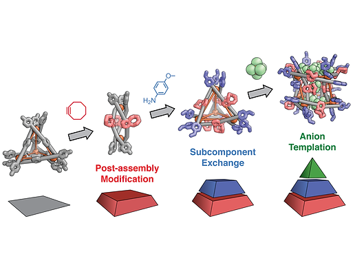 136. Covalent post-assembly modification triggers multiple structural transformations of a tetrazine-edged FeII₄L₆ tetrahedron