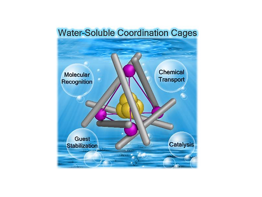 172. Design and Applications of Water–Soluble Coordination Cages