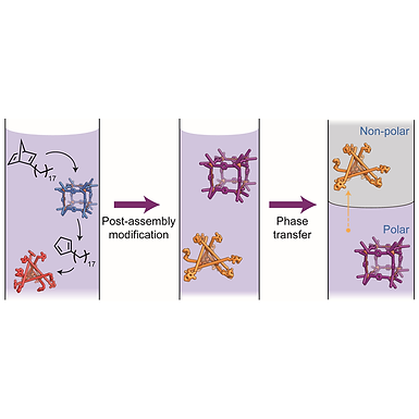 129. Signal transduction in a covalent post-assembly modification cascade