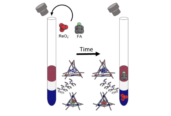 147. Embedding and positioning of two FeII4L4 cages in supramolecular tripeptide gels for selective chemical segregation