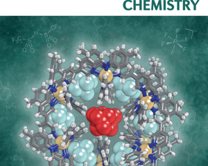 Felix's and Larissa's review was featured on the cover of Nature Reviews Chemistry.
