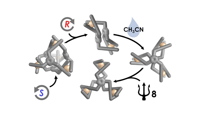 144. Hydrogen-bond-assisted symmetry breaking in a network of chiral metal- organic assemblies