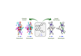 182. Sterics and Hydrogen Bonding Control Stereochemistry and Self-Sorting in BINOL-based Assemblies