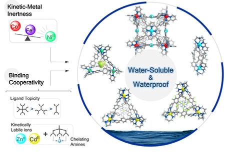 """Molecular Submarines"" ─ Edmundo's paper highlighted by the RSC"