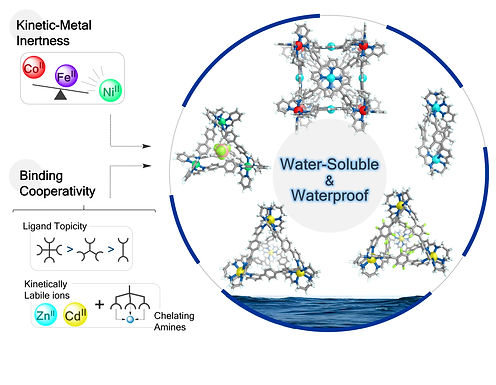 145. Waterproof architectures through subcomponent self-assembly