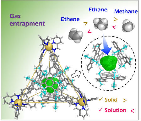180. A Cavity-Tailored Metal-Organic Cage Entraps Gases Selectively in Solution and the Amorphous Solid State