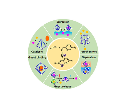 141. Functional Capsules via Subcomponent Self-Assembly