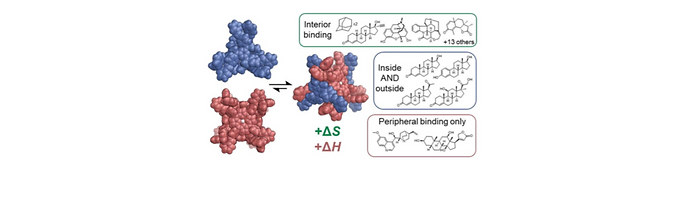 152. Multi-site binding of drugs and natural products in an entropically- favorable, heteroleptic receptor