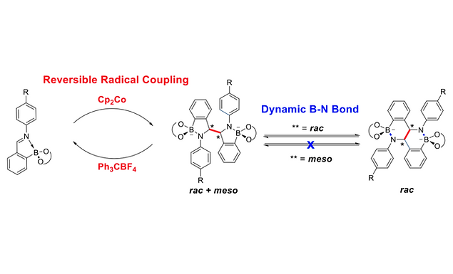 138. Post-Assembly Reactivity of N-Aryl Iminoboronates: Reversible Radical Coupling and Unusual B-N Dynamic Covalent Chemistry