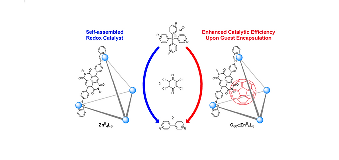 151. A Zn4L6 capsule shows enhanced catalytic C‐C bond formation activity upon C60 binding