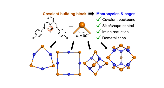153. Metal and Organic Templates Together Control the Size of Covalent Macrocycles and Cages