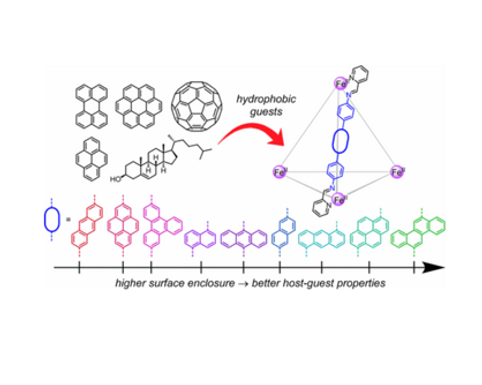 131. Design Principles for the Optimization of Guest Binding in Aromatic-Paneled FeII4L6 Cages