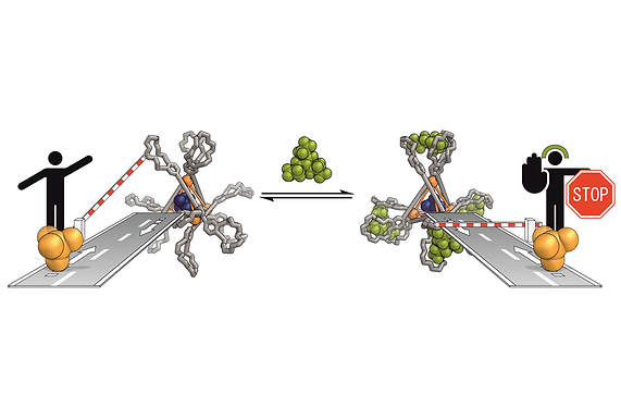 140. Multivalent Crown-ether Receptors Enable Allosteric Regulation of Anion Exchange in an Fe₄L₆ Tetrahedron
