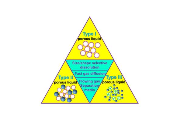 171. Engineering Permanent Porosity into Liquids