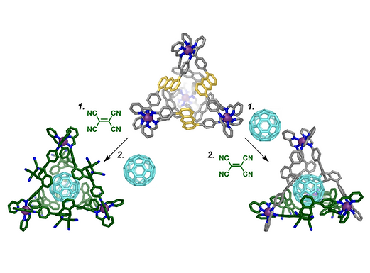 116. Pathway-Dependent Post-assembly Modification of an Anthracene-Edged MII4L6 Tetrahedron