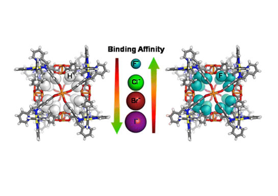 113. Subtle Ligand Modification Inverts Guest Binding Hierarchy in MII8L6 Supramolecular Cubes