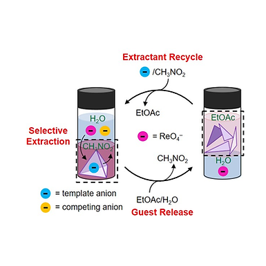 135.  Selective Anion Extraction and Recovery Using a FeII4L4 Cage