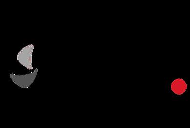 viso Logo 3.png