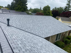 roof 1.1