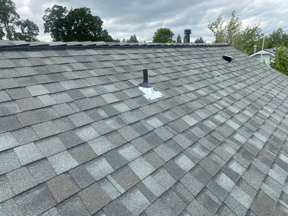 roof 8.3