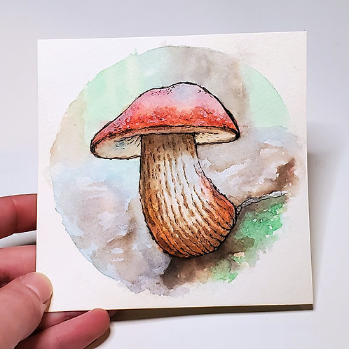 Red-Capped Mushroom | Watercolor Painting