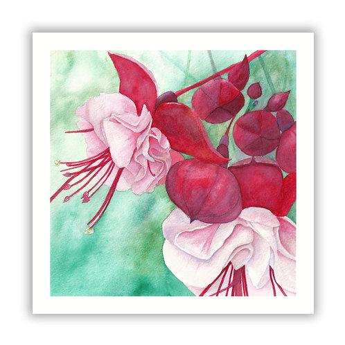 Fuchsia - Giclee Print