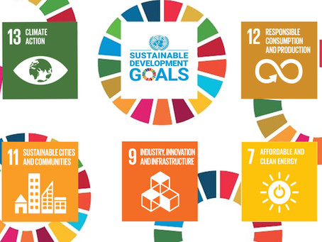 Walking the Talk with Sustainable Development Goals