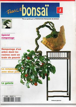 France Bonsaï Nº 4