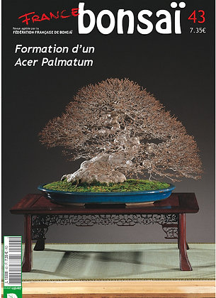 France Bonsaï Nº 43