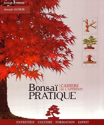 BONSAI PRATIQUE CAHIERS DE L'APPRENTI