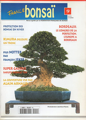 France Bonsaï Nº 9