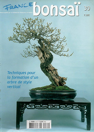 France Bonsaï Nº 30