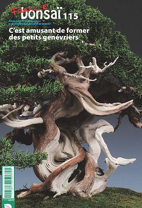 France Bonsaï Nº 115