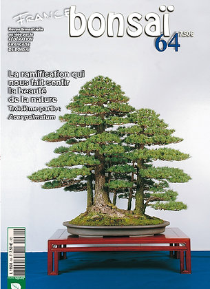 France Bonsaï Nº 64