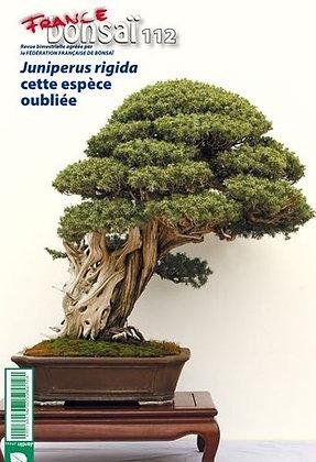 France Bonsaï Nº 112